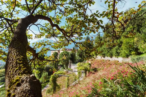 Sonnengärten2-K1000.jpg